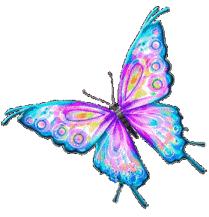 KinderOpvang De vlinder